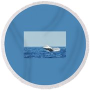 Humpback Smackdown Off Bermuda Round Beach Towel by Jeff at JSJ Photography