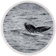 Humpback Whale Tail Round Beach Towel