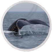 Humpback Whale Round Beach Towel by Trace Kittrell
