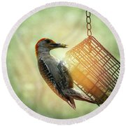Hungry Woodpecker Round Beach Towel