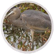 Hungry Heron Round Beach Towel