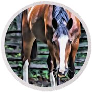 Hungry Horse 1 Round Beach Towel
