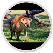 Round Beach Towel featuring the photograph Hungry Looking Hyena by Sheila Brown