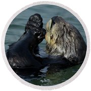 Hungry Sea Otter Round Beach Towel