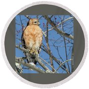 Round Beach Towel featuring the photograph Hunter Square by Bill Wakeley