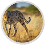 Hunting Cheetah Round Beach Towel by Inge Johnsson