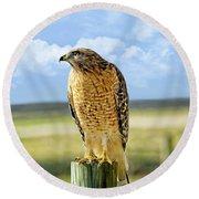 Hunting Hawk Round Beach Towel