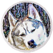 Husky Portrait Round Beach Towel