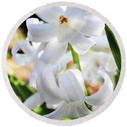 Hyacinth Close Up Round Beach Towel