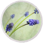 Round Beach Towel featuring the photograph Hyacinth Grape by Lyn Randle