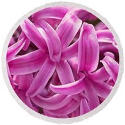 Round Beach Towel featuring the photograph Hyacinth Pink Pearl by Rona Black