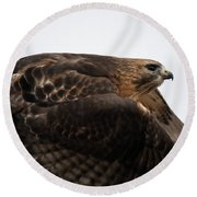 Hybrid Hawk Flyby  Round Beach Towel