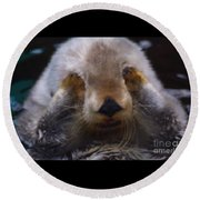 Round Beach Towel featuring the photograph I Can't Watch by Nick Gustafson