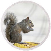 Round Beach Towel featuring the photograph I Have My Nuts by Deborah Benoit