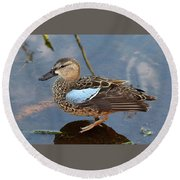 I Really Am A Green Winged Teal Round Beach Towel