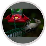 I Want To Be A Hummingbird Round Beach Towel by Robert L Jackson