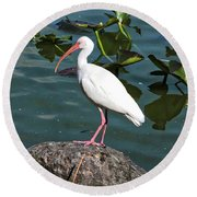 Ibis Rock Round Beach Towel