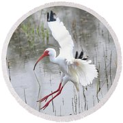 Ibis Soft Water Landing Round Beach Towel