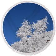 Ice Crystals Ute Pass Cos Co Round Beach Towel