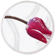 Round Beach Towel featuring the photograph Ice Drops On Tulip by James Steele