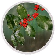 Round Beach Towel featuring the photograph Iced Holly - 365 - 294 by Inge Riis McDonald