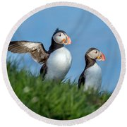 Iceland A World Of Puffins Round Beach Towel
