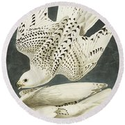 Iceland Or Jer Falcon Round Beach Towel by John James Audubon