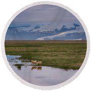 Iceland Sheep Reflections Panorama  Round Beach Towel