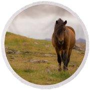 Icelandic Horse Round Beach Towel