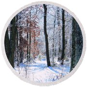 Icey Forest 1 Round Beach Towel by Craig Walters