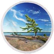Iconic Windswept Pine Round Beach Towel