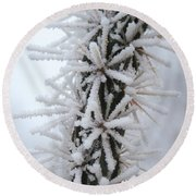 Icy Cactus Round Beach Towel