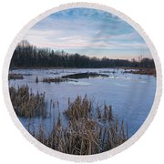 Icy Glazed Wetlands Round Beach Towel by Angelo Marcialis