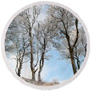 Icy Trees Round Beach Towel