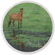 Idaho Farm Horse1 Round Beach Towel