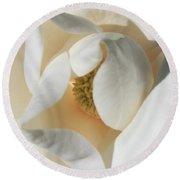 Illuminated Magnolia Macro Round Beach Towel