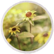 Illuminated Zinnia Round Beach Towel