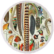 Illustration Of Feathers And Birds  Round Beach Towel