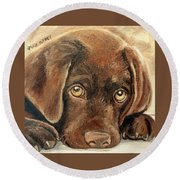 I'm Sorry - Chocolate Lab Puppy Round Beach Towel by Julie Brugh Riffey