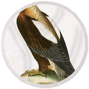 Imperial Eagle Round Beach Towel by English School