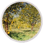 Impossibility Of A Lemon Tree Round Beach Towel