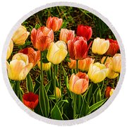 Impressions Of Gardens - Particolored Vernal Tulips Round Beach Towel