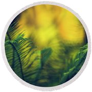 Round Beach Towel featuring the photograph In-fern-o by Gene Garnace