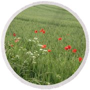 in Flanders Fields the  poppies blow Round Beach Towel
