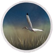 Round Beach Towel featuring the photograph In Flight 1 by Phil Mancuso