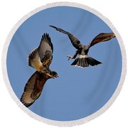 Round Beach Towel featuring the photograph In Flight Challenge H43 by Mark Myhaver