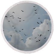 Round Beach Towel featuring the photograph In Flight by Rob Hans