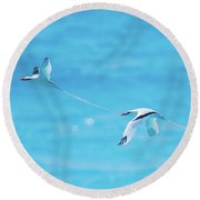 In-line Formation Flying Round Beach Towel