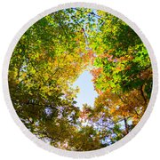 Round Beach Towel featuring the photograph In Many Colors by Parker Cunningham