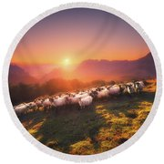 In Saibi With Companionsheep Round Beach Towel